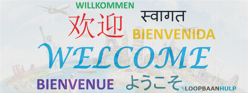 Andere taal leren carrière